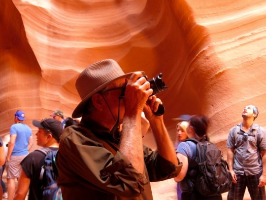 Photography In A Herd