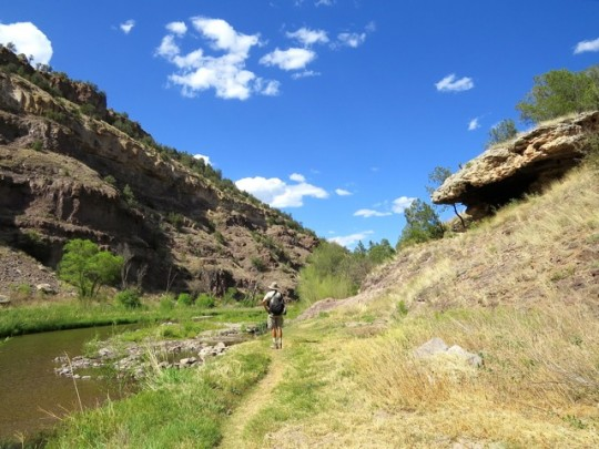 Pretty Trail Along The Middle Fork Of The Gila