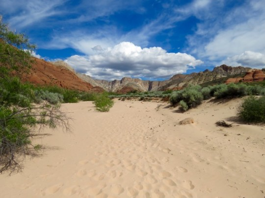 Hiking Through A Sandy Wash