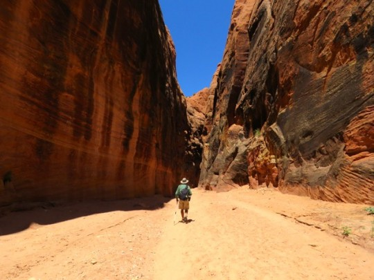 Dwarfed By The Canyon Walls