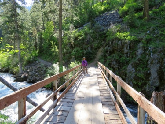 Chief Joseph Trail In Wallowa State Park