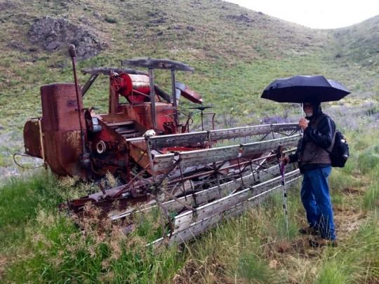 Vintage Farm Equipment Along The Trail