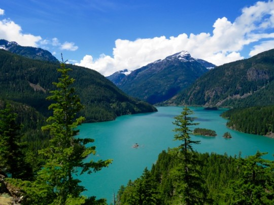 Along The North Cascades Scenic Highway
