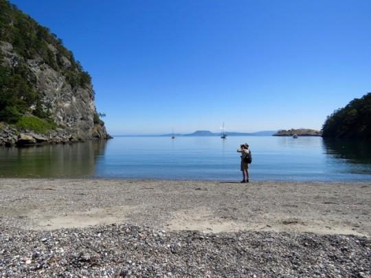 Watching Peregrines At Watmough Bay