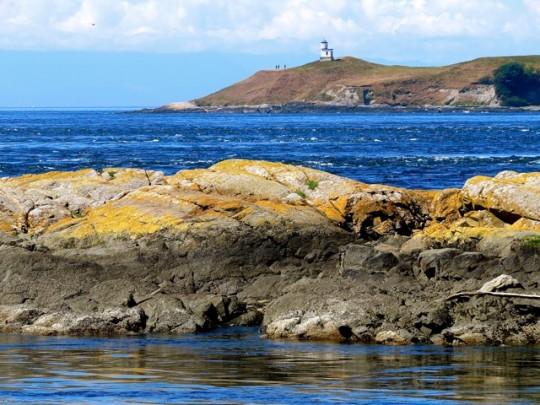 San Juan Island From Shark Reef
