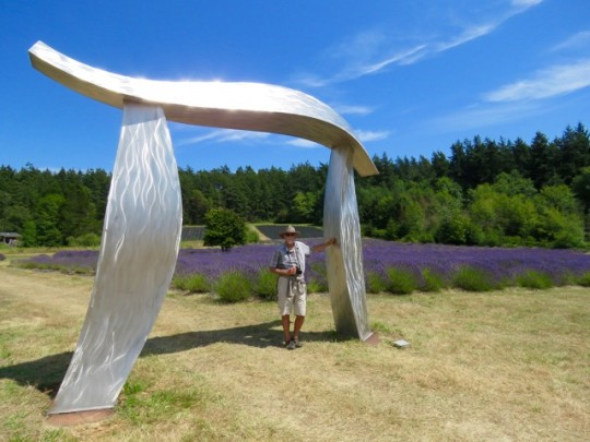 Sculptures In The Lavender Fields