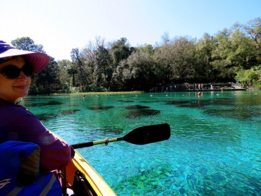 Gorgeous Florida Springs