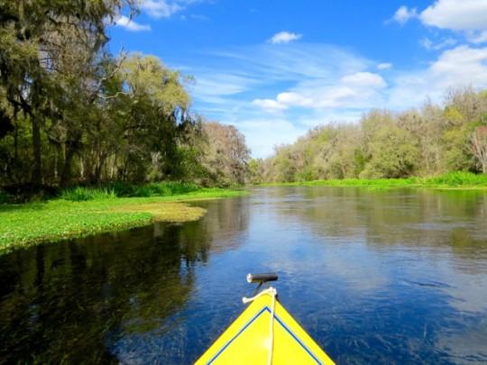 Ichetucknee River, North Central Florida