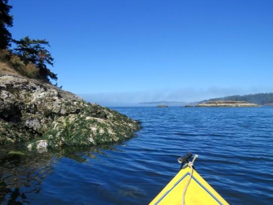 Kayaking The Bays, Lopez Island