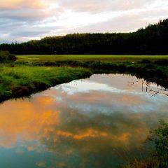 Sunset At Heyburne State Park