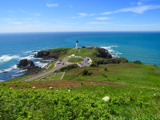 Yaquina Head Lighthouse From Salal Hill