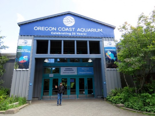 At The Oregon Coast Aquarium