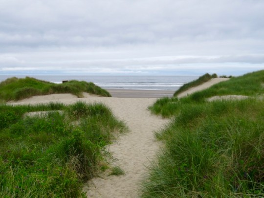 Dunes To The Beach At Nehalem Bay Campground
