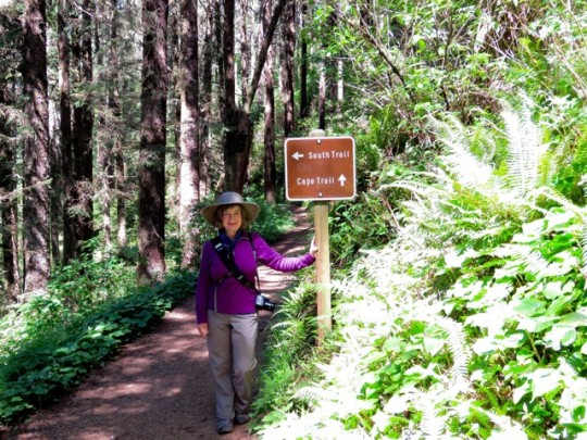 On The Trail To Cape Lookout