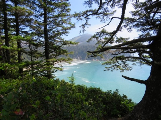 Views Along Cape Falcon Trail