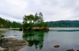A Delightful Week At Salt Creek Recreation Area: The Olympic Peninsula