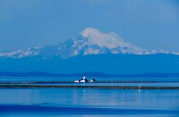 A Lighthouse Hike And Lavender Fields: Sequim, WA