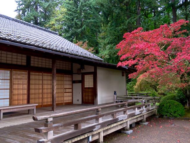 Oregon raven and chickadee - Portland japanese garden free day ...