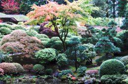 Rainy Days And Gardens: Portland, OR